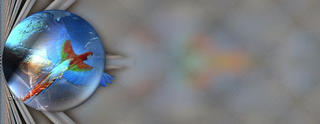 Tuto colibri 2